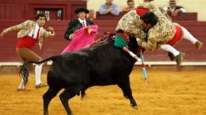 tourada---forcados7909cc0f_400x225